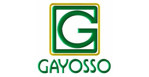 Grupo G