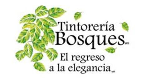 Tintorería Bosques