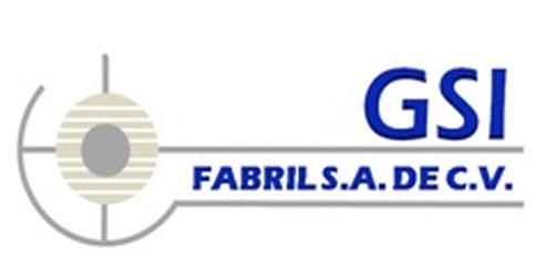 GSI FABRIL SA DE CV