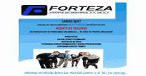 empleos de asesor de ventas a gobierno en FORTEZA AGENTE DE SEGUROS S.A DE C.V