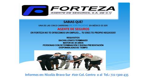 FORTEZA AGENTE DE SEGUROS S.A DE C.V