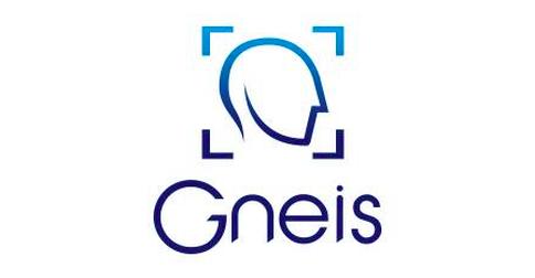 Gneis