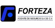 empleos de agentes de ventas en Forteza