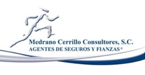 MEDRANO CERRILLO CONSULTORES S.C