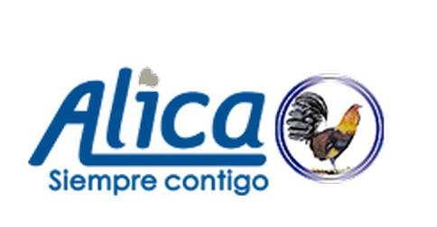 PLASTICOS ALICA S.A DE CV