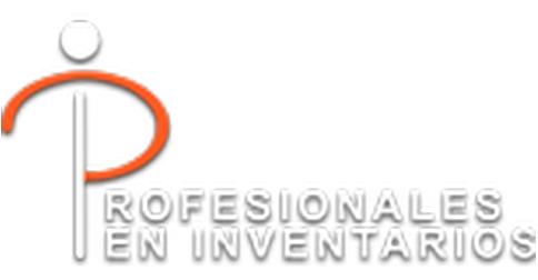 PROFESIONALES EN INVENATRIOS SA DE CV