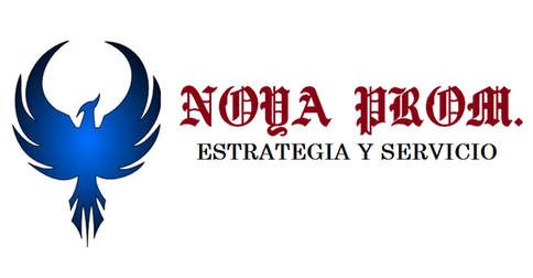 COMERCIALIZADORA NOYA S.A DE C.V.