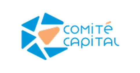 COMITE CAPITAL S.A DE C.V