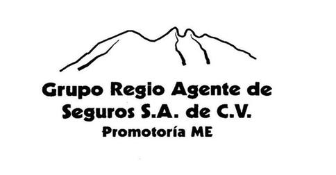 GRUPO REGIO AGENTE DE SEGUROS S.A .DE C.V.