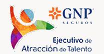 empleos de agente profesional de seguros en GNP Seguros Riterdan