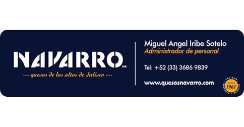 Grupo Industrial y Comercial Navarro SA de CV