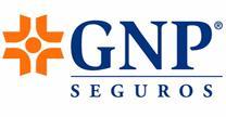 empleos de asesor comercial metepec en GNP SEGUROS