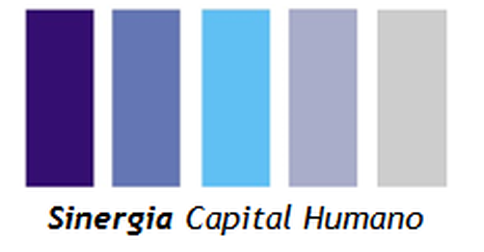 Sinergia Capital Humano