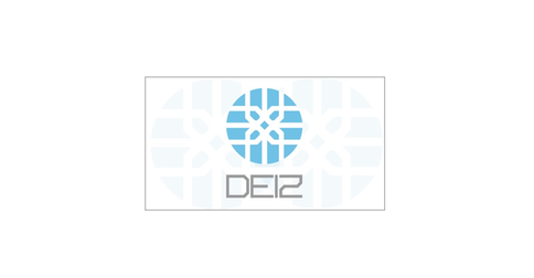 DEIZ CAPITAL Y SEGURIDAD