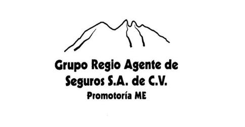 Grupo Regio Agente de Seguros