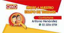 empleos de auxiliar general en Cadena Comercial OXXO