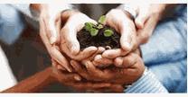 empleos de gerente de investigacion y desarrollo en Agromich