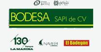 empleos de analista de datos maestros en BODESA SAPI DE CV