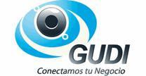 Planeación y estructuras GUDI