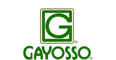 Grupo Gayosso Corporativo SA de CV