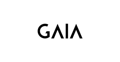 empleos de business analyst en GAIA DESIGN