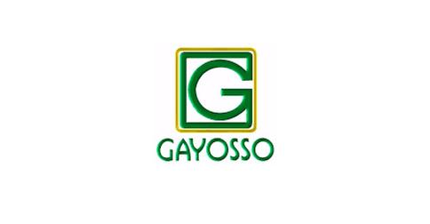 empleos de asesor de ventas y atencion a clientes en Grupo Gayosso