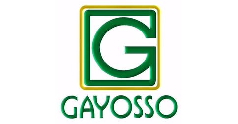 empleos de asesor de ventas master en GAYOSSO