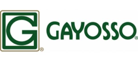 empleos de promo vendedor en GAYOSSO