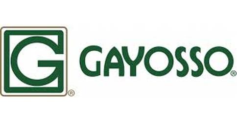 empleos de ejecutivo comercial en Gayosso