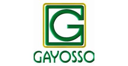 empleos de agente de ventas junior en Gayosso
