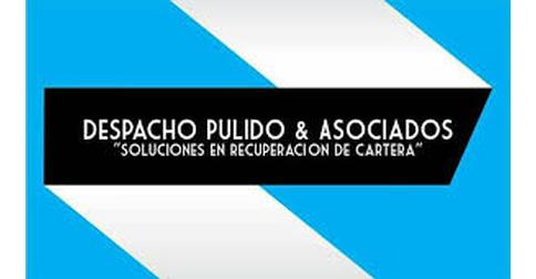 empleos de analista de informacion en DESPACHO PULIDO Y ASOCIADOS