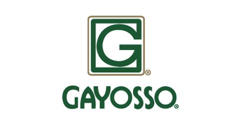 empleos de vendedor comisionista ingresos 20000 o mas en Gayosso