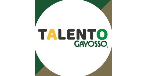 empleos de ejecutivo de ventas telefonicas en Grupo Gayosso
