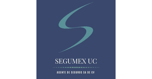 empleos de agente de ventas en Segumex UC SA. de CV.