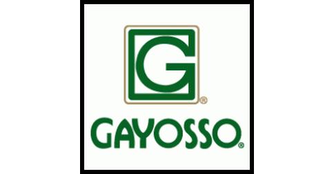 empleos de venta en Gayosso