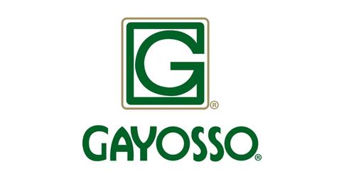 empleos de ejecutivo de ventas corporativas en Gayosso