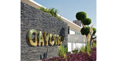 empleos de asesoe de ventas y atencion a clientes en Gin Group