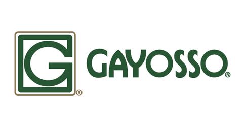 empleos de asesor de ventas en GAYOSSO