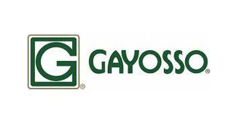 empleos de promotora de ventas en CORPORATIVO GAYOSSO