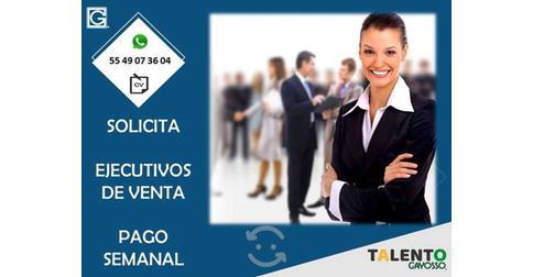 empleos de ejecutiva comercial en GSC