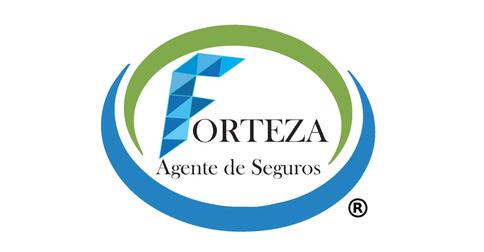 empleos de agente de ventas en FORTEZA AGENTE DE SEGUROS S.A de C.V