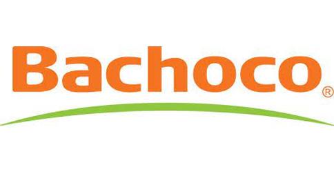 empleos de analista de reclutamiento eventual por 3 meses en BACHOCO