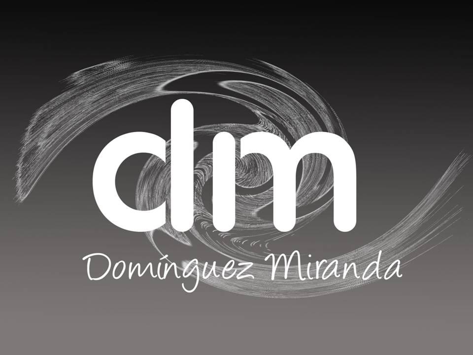 Perfil de Juan Salvador Domínguez Huitrón