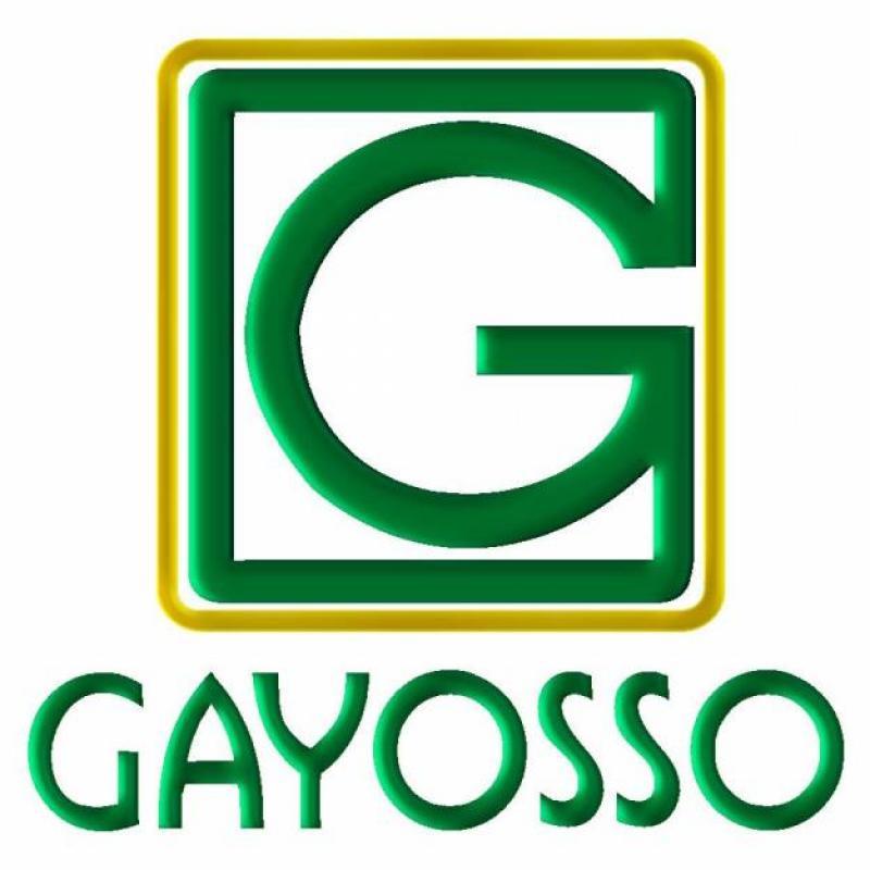 Perfil de Grupo Gayosso