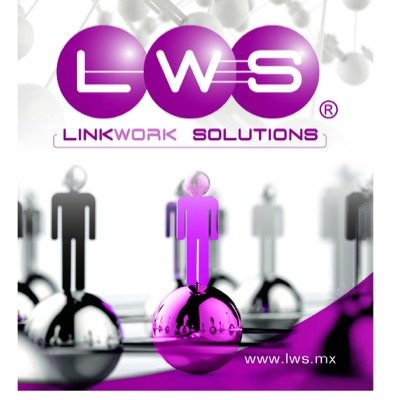 Perfil de Link Work Solutions