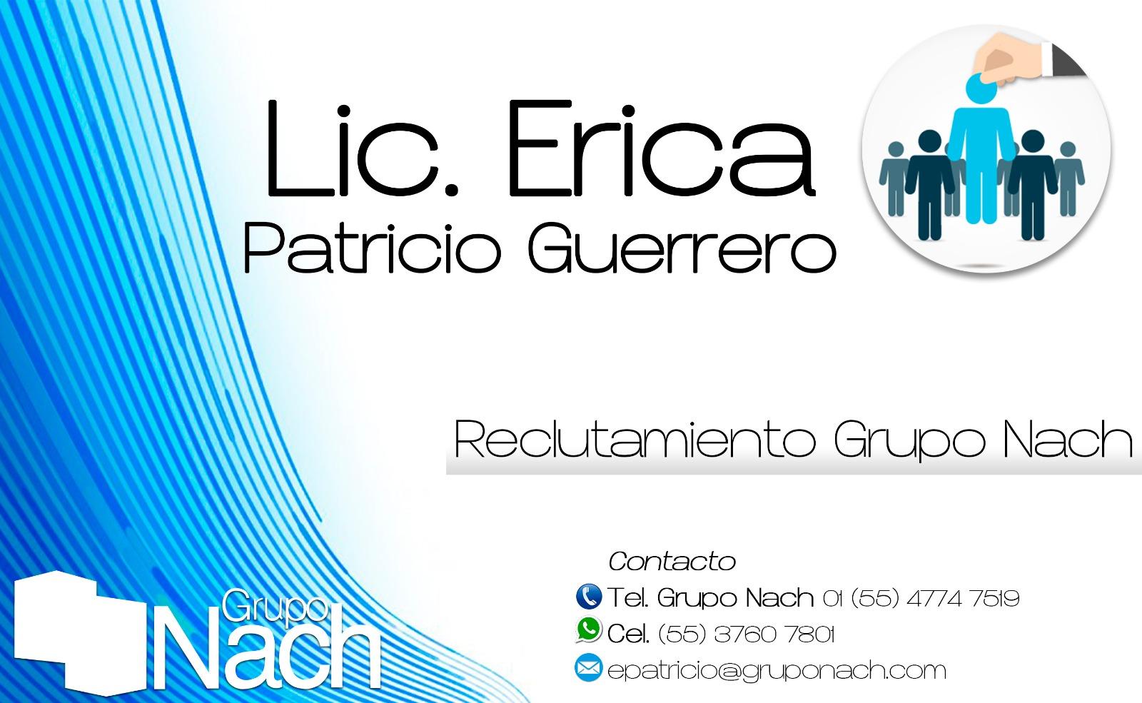 Perfil de Erica Patricio Guerrero