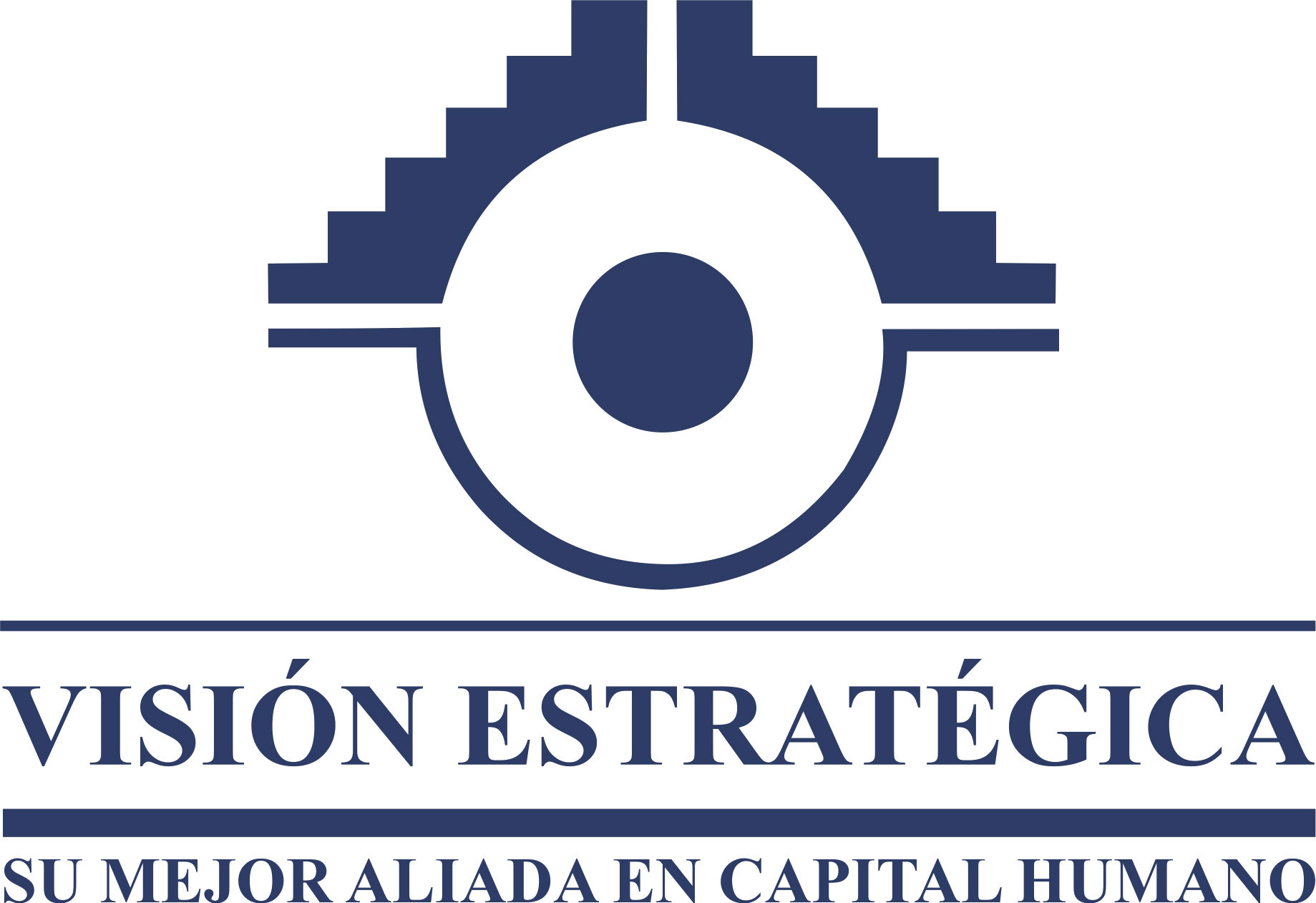 Perfil de Visión Estratégica