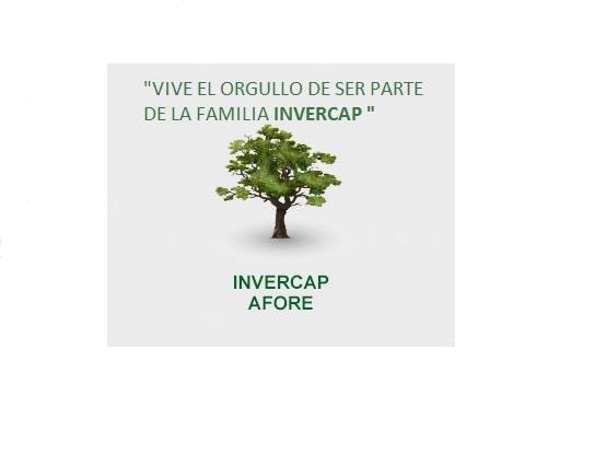 Perfil de INVERCAP JUAREZ