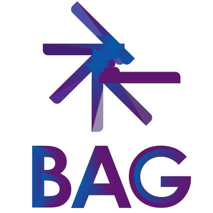 Perfil de BAG Consultoría Especializada (Recursos Humanos)