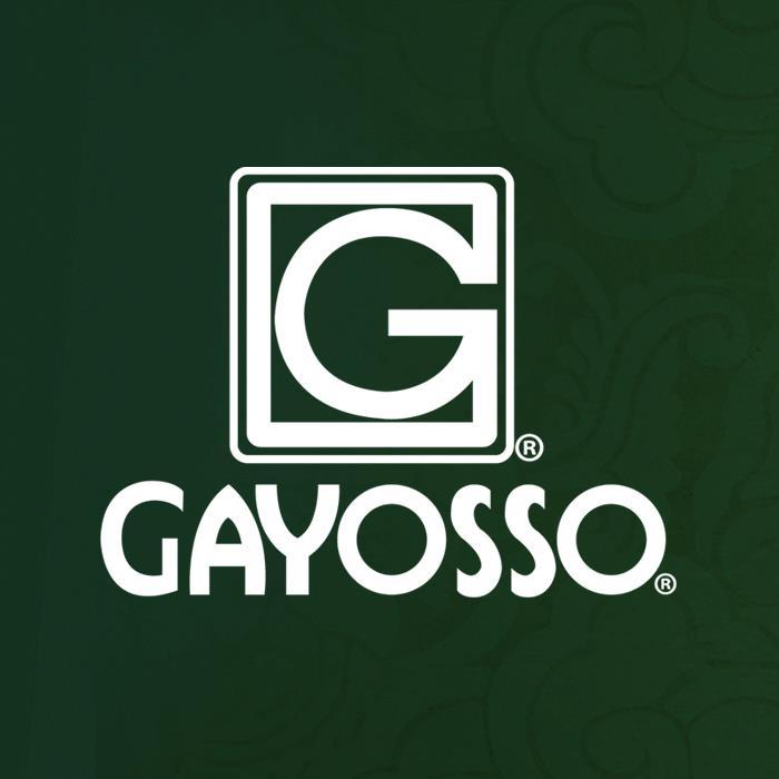 GAYOSSO  CORPORATIVO